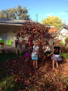 girl fun in the leaves 11-15-14