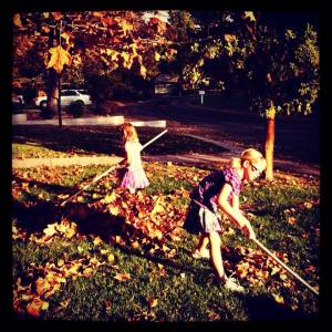 girls raking 11-9-13